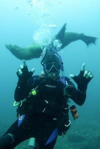 San Carlos mexico diving