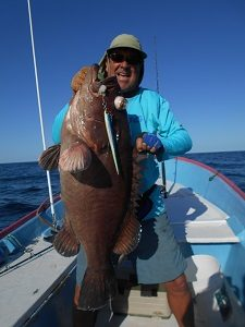 grouper san carlos