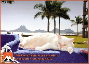 hot-off-the-press-2017-calendar-for-sale-copy