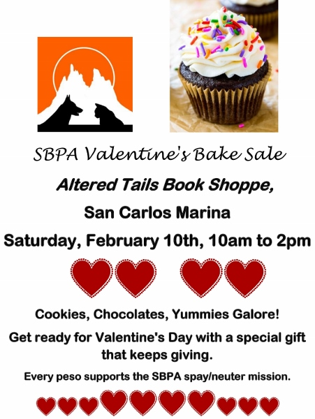 February 14 Valentine S Day Events In San Carlos Mexico